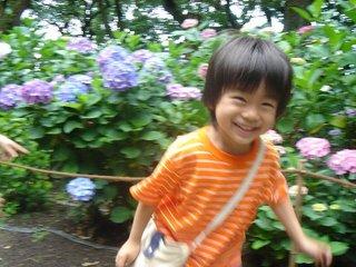 ajisai_to_yusuke