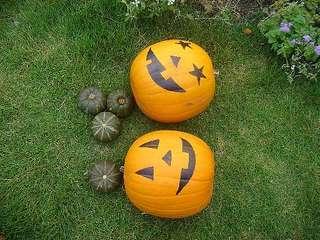 Halloween200510222