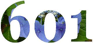 601go